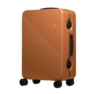 GINKGOスーツケース(カッパーストライプ) 寄付金額90,000円 イメージ