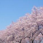 富山県 舟橋村のふるさと納税のご紹介