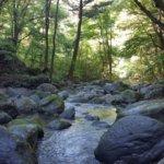 栃木県 塩谷町のふるさと納税のご紹介