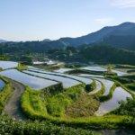 熊本県 美里町のふるさと納税のご紹介