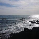 鳥取県 岩美町のふるさと納税のご紹介