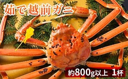 【先行受付】茹で越前ガニ【期間限定】食通もうなる本場の味をぜひ、ご堪能ください。 約800g以上×1杯