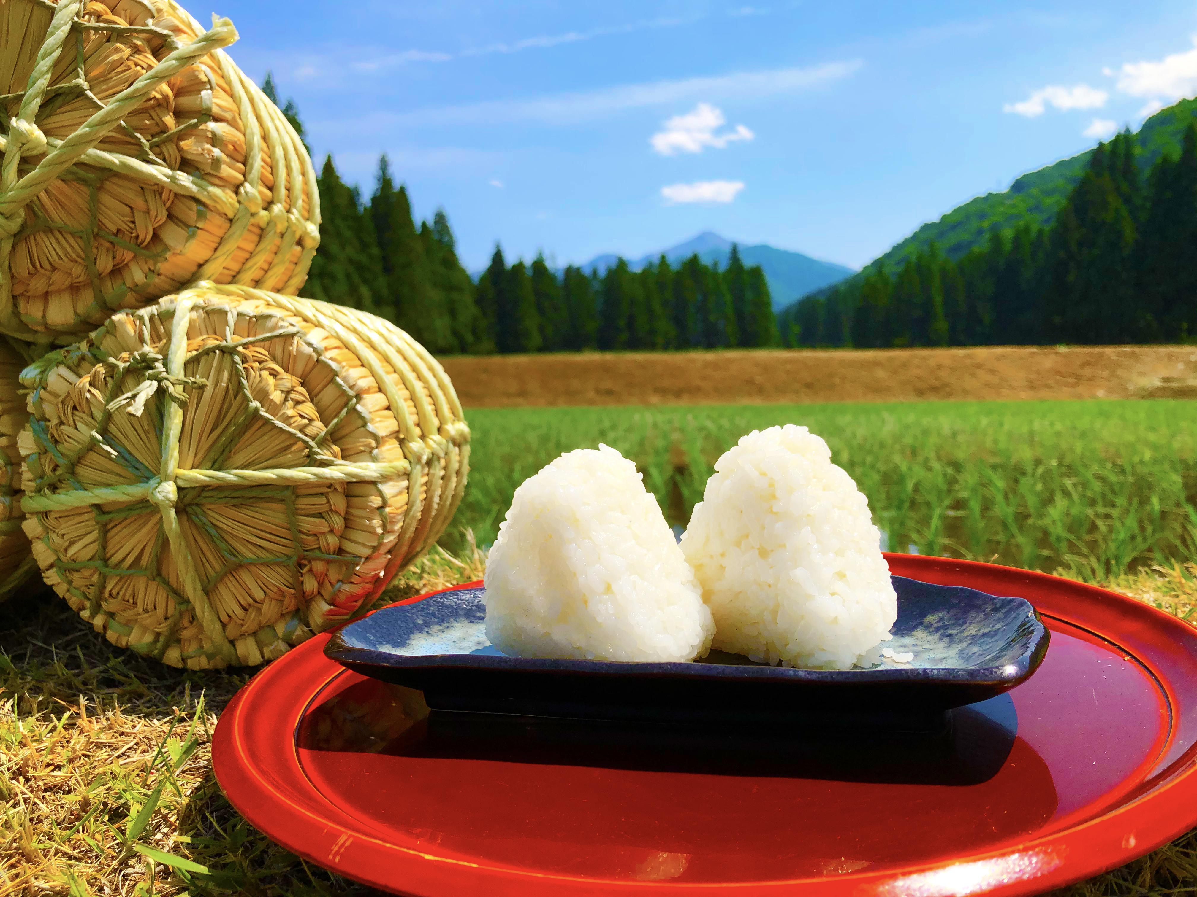 湯沢町の農家で作られたコシヒカリ米