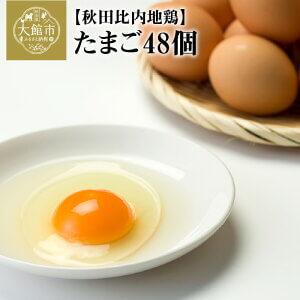 秋田比内地鶏たまご48個 6個入×8パック  イメージ