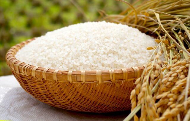 ふるさと納税でお米が人気の理由とおすすめの時期