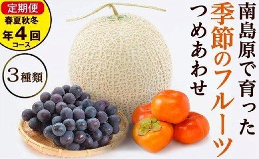春夏秋冬 旬のフルーツセット定期便 年4回コース 果物の食べ比べセット