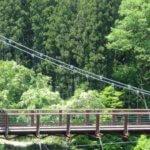 長野県 根羽村のふるさと納税のご紹介