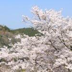 奈良県 黒滝村のふるさと納税のご紹介