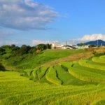 鹿児島県 湧水町のふるさと納税のご紹介