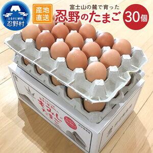 卵 たまご 旨味 30個