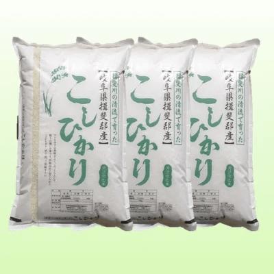 特別栽培米 30kg 【白米】(コシヒカリ)  寄附金額30,000円(岐阜県池田町)