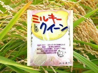 茨城県産ミルキークイーン 10kg 寄附金額10,000円 イメージ