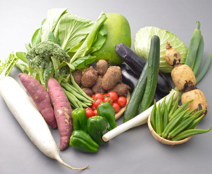 季節の野菜セット 寄附金額10,000円 イメージ