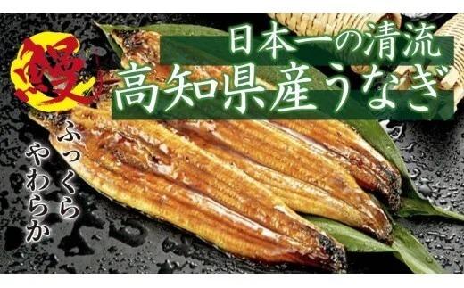 【大人気!】高知県産 うなぎ蒲焼き 100~120g 2尾セット