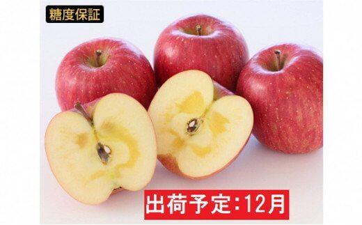 年内 蜜入り 糖度保証サンふじ約2kg【JA津軽みらい・平川市産・青森りんご・12月】