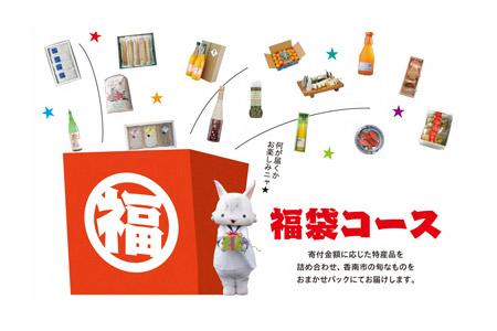 何が届くかワクワク! 福袋コース 寄附金額20,000円(高知県香南市) イメージ
