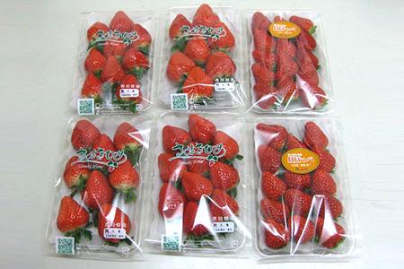 いちご食べ比べセット 寄附金額13,000円 (香川県丸亀市) イメージ
