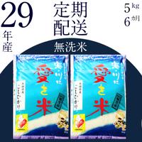 BG無洗米(定期)コシヒカリ 5kg/6ヵ月