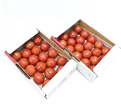 根本さん家のこだわりフルーツトマト2箱