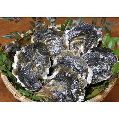 岩牡蠣セット(加熱用・大)