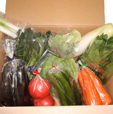 季節の野菜の詰め合わせ 寄附金額5,000円(季節の野菜の詰め合わせ) イメージ