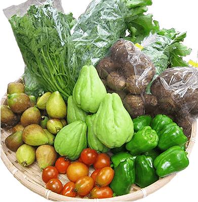 八州高原マルシェ自慢の旬な野菜達 寄附金額5,000円(群馬県榛東村) イメージ