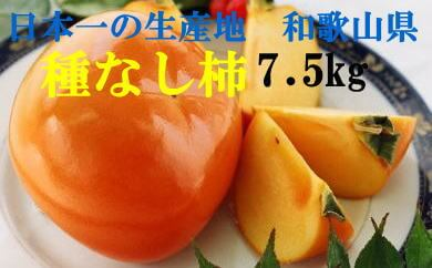 和歌山産 種なし柿 約7.5kg(M・Lサイズおまかせ) 寄附金額10,000円(和歌山県湯浅町) イメージ