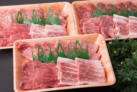 鳥取和牛 大ボリューム焼肉セット(鳥取県倉吉市)寄附金額50,000円 イメージ