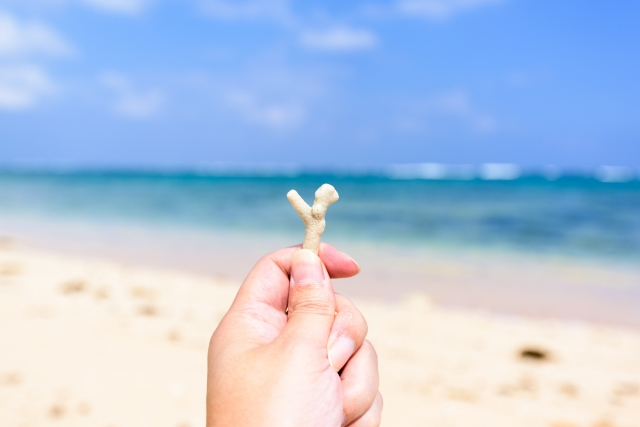 天然珊瑚のネックレス 寄附金額20,000円(高知県大月町) イメージ