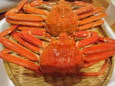 鳥取県産 ボイル夫婦がに 寄附金額20,000円(鳥取県鳥取市) イメージ