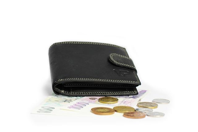 LUEGO コードバン小銭入れなし二つ折り財布50,000 円 寄附金額(山形県新庄市) イメージ