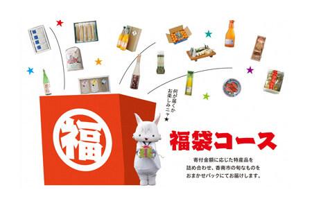 何が届くかワクワク! 福袋コース 寄附金額30,000円(高知県香南市) イメージ