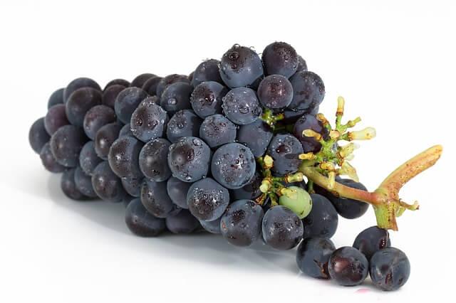 皮ごとたべる黒葡萄 ナガノパープル約2kg 寄附金額20,000円(長野県箕輪町) イメージ