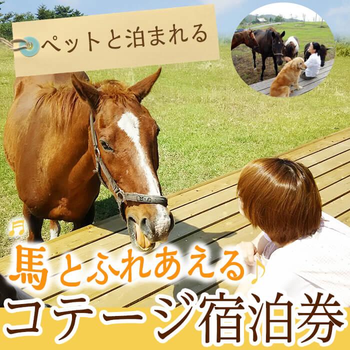 馬とふれあう&ペットと宿泊できる!コテージPOSY 1泊2日宿泊券(1名様分)