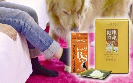 日本介助犬福祉協会 応援セット 寄附金額20,000円(神奈川県綾瀬市) イメージ