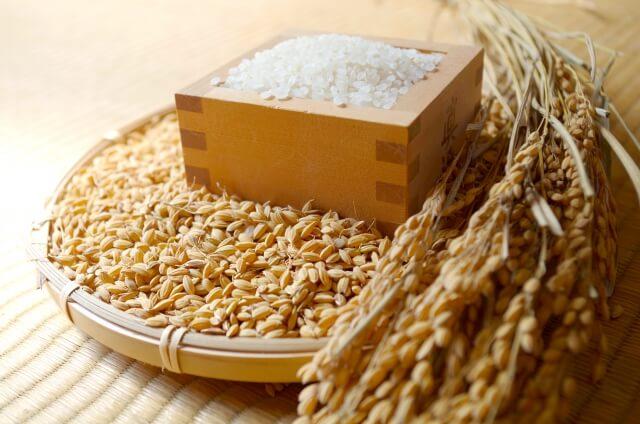 【令和元年産】茨城県のお米4種食べくらべ20kgセット