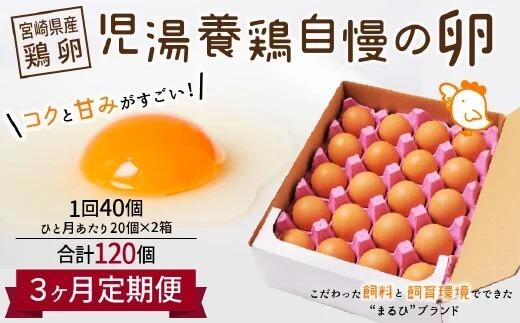 <児湯養鶏自慢の卵 計120個(40個×3回)>3ヶ月定期便 イメージ