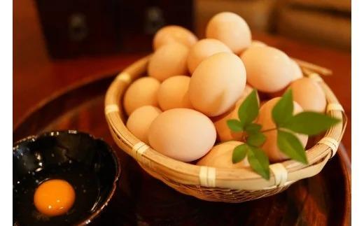 名古屋コーチン卵(30個入り) イメージ