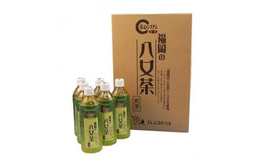 福岡八女茶のペットボトル.緑茶(500ml×24本)