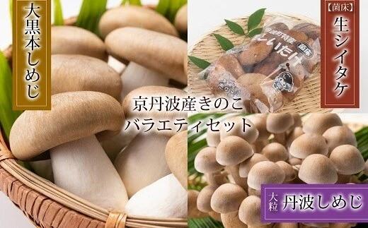 菌床で栽培した京丹波町産きのこバラエティセット