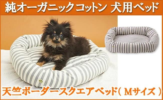 オーガニックコットン犬用ベッド【天竺ボーダースクエアべッド 杢グレー】Mサイズ イメージ