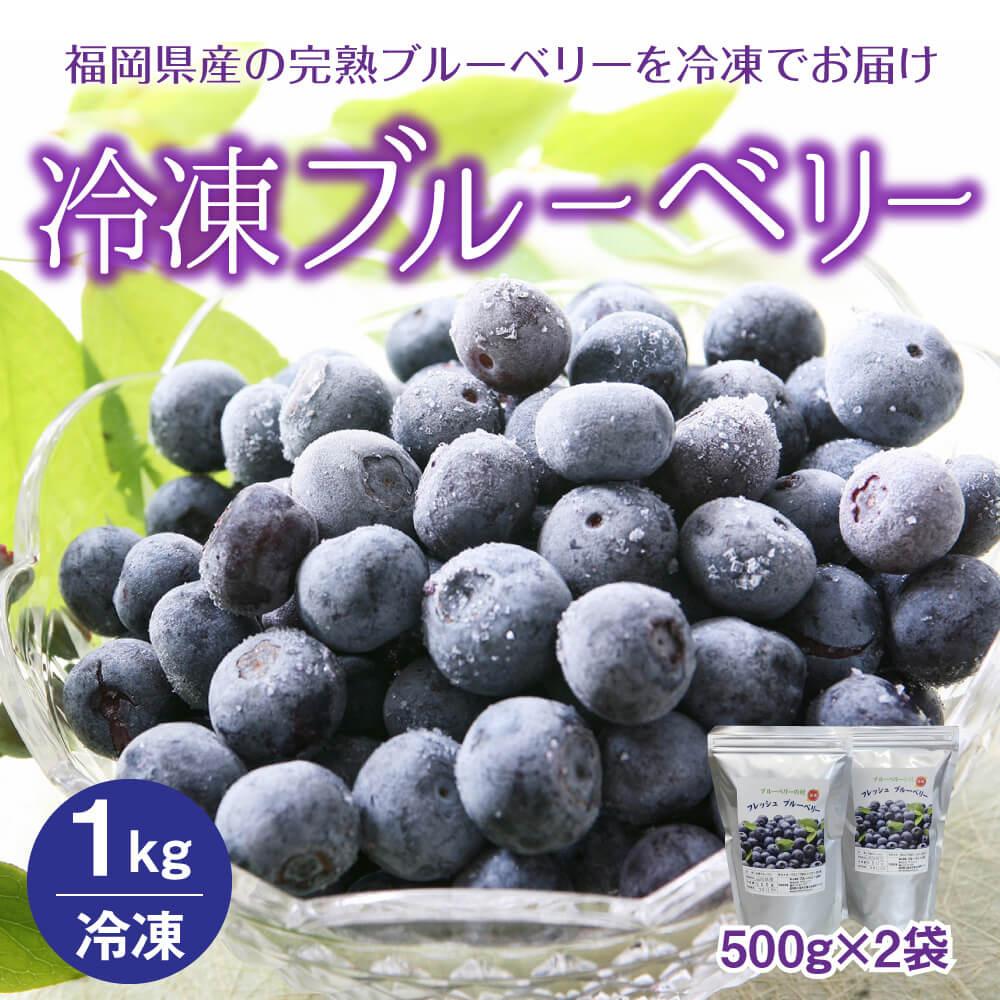 冷凍ブルーベリー 1kg 500g×2袋  イメージ