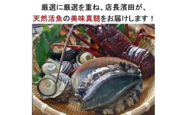 イセエビ&アワビ&サザエの天然魚介豪華セット!