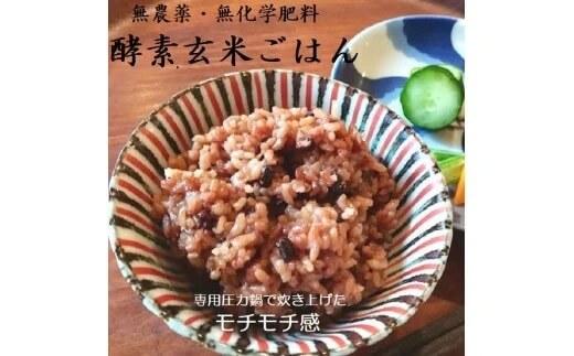 酵素玄米ごはん(長岡式) 8個