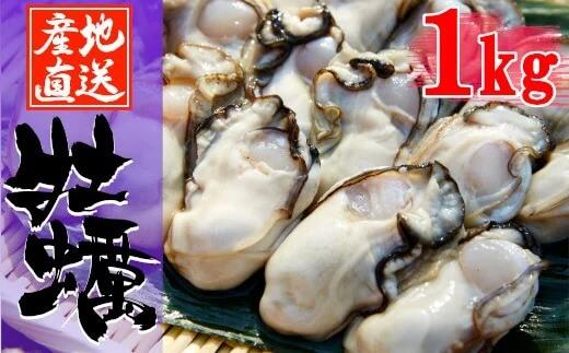 広田湾漁協からお届け!むき身牡蠣(加熱用)1kg