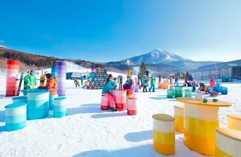 星野リゾート アルツ磐梯・猫魔スキー場 共通リフト1日券引換券 20-21シーズン