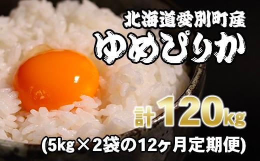愛別町産米(ななつぼし5kg&ゆめぴりか5kg)12ヶ月定期配送