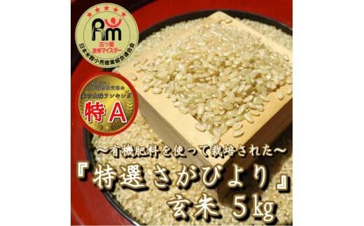 有機肥料を使って栽培した≪特選さがびより≫みやき町産【玄米5kg】