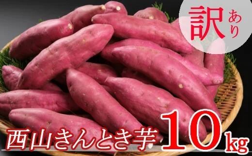 【訳あり】西山きんとき芋(さつまいも)10kg
