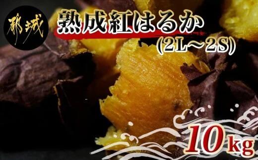 島津甘藷 熟成紅はるか 10kg(2L~2S)